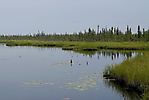Inuvik à Eagle Plains_36